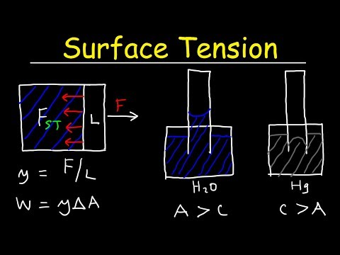 Surface Tension of Water, Capillary Action, Cohesive and Adhesive Forces - Work & Potential Energy