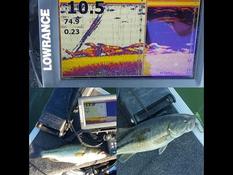 Lowrance dropshot bass fishing...