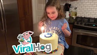 Birthday Bumble || ViralHog