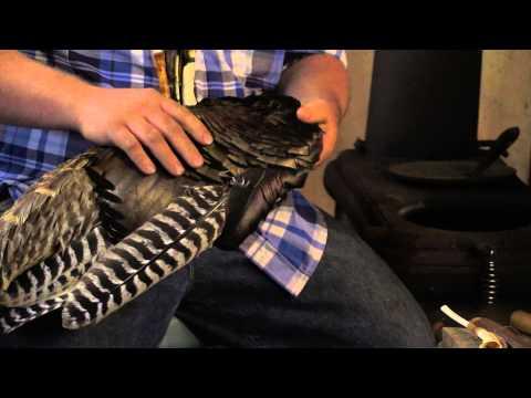Wing Bone Turkey Call