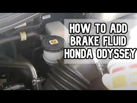 How to add brake fluid to your vehicle | 2005-2014 Honda Odyssey DIY video | #diy #brake