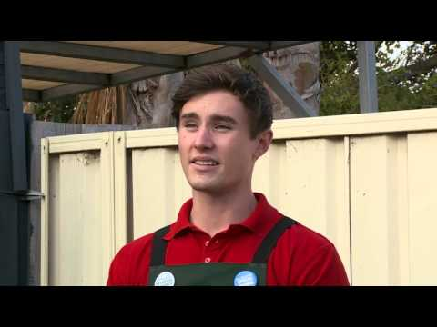 How To Make Your Own Compost - DIY At Bunnings