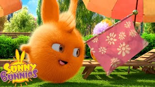SUNNY BUNNIES - Funny Magic Tricks | Season 2 | Cartoons for Children