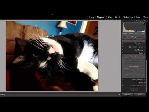 How to Turn Up the Contrast in an Image in Lightroom