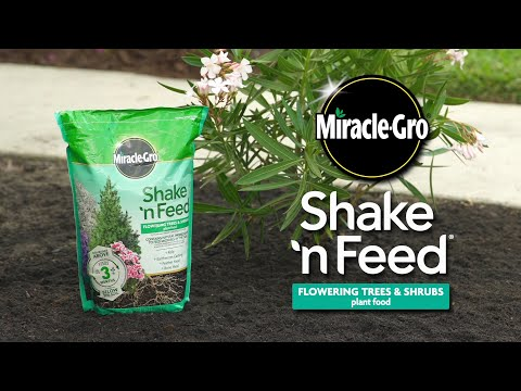 How to Use Miracle-Gro® Shake 'n Feed® Flowering Trees & Shrubs Plant Food