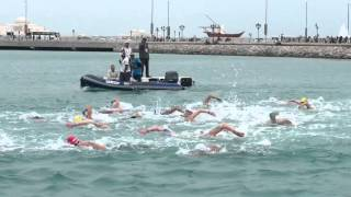 Abu Dhabi- Men's Fina 10k Marathon swimming World Cup, 2016