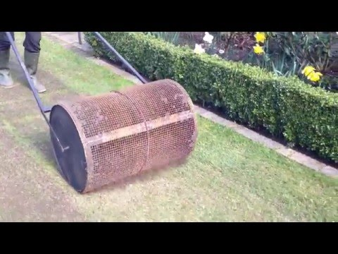 TOPDRESSING ROLLER for sand/compost after overseeding