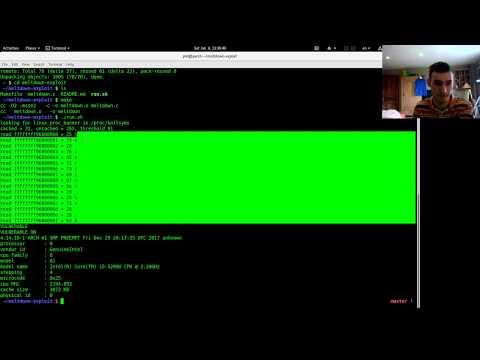 meltdown: check cpu vulnerability on linux
