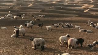 A trip to Nushki -the valley of golden desert.