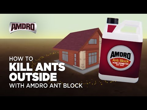 How to Kill Ants Outside with AMDRO Ant Block