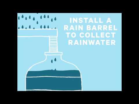 Surfrider Clean Water Rain Barrel Final