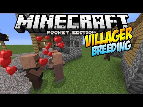 VILLAGER BREEDING IN MCPE!! - Breed Baby Villagers!!- Minecraft PE (Pocket Edition)