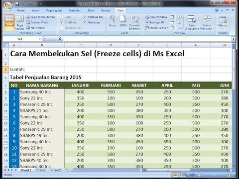 Cara Menggunakan perintah Freeze Panes di Ms Excel|Excel 2007 tutorial