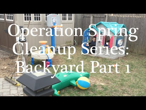 Operation Spring Cleanup Series: Backyard Part 1