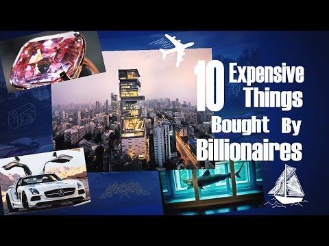 10 Most Expensive Things Billionaires Bought!