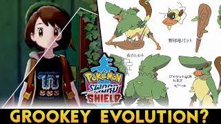 Grookey Final Evolution Leak Videos 9tube Tv