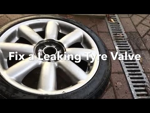 How to Fix a Tyre (Tire) Valve Leak
