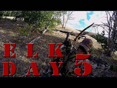 Recurve Bow Hunting Elk on Public Land with Clay Hayes - DIY Archery Elk Day 5
