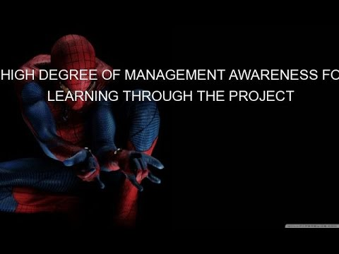 A HIGH DEGREE OF MANAGEMENT AWARENESS FOR LEARNING THROUGH THE PROJECT