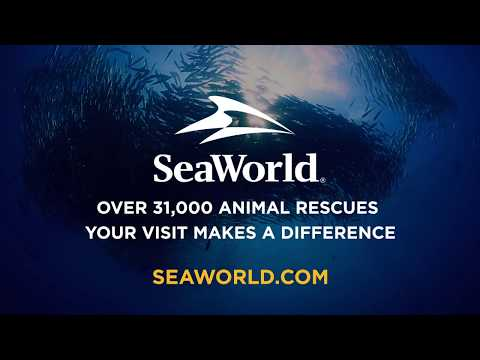 From Park to Planet™: We're on a mission to Save Our Oceans & Planet   SeaWorld