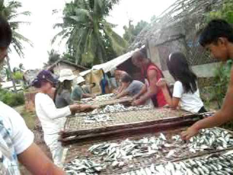 dried fish.MOV