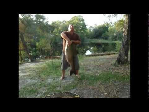 I  Catch A Monster Carp