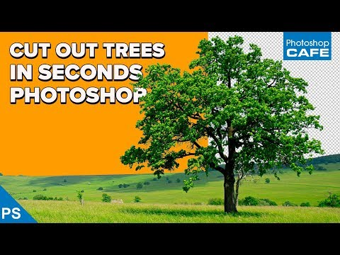 INSTANTLY CUT OUT TREES in PHOTOSHOP | Channel based selections