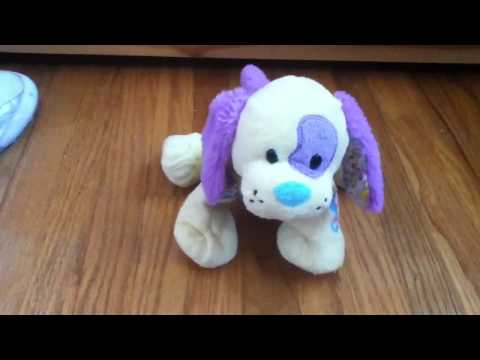 FREE WEBKINZ ACCOUNT GIVEAWAY (Closed)