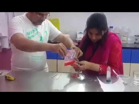 An easy way of DNA Extraction (Urdu)