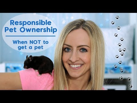 Responsible Pet Ownership | When NOT To Get A Pet