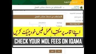 Saudi Arabia renewal iqama tax & iqama Chaka Jawazat fees  in Hindi