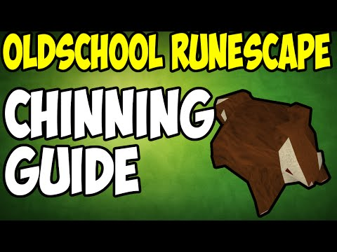 Oldschool Runescape - 2007 Chinning Guide | Ape Atoll Chinning | 350k XP/H
