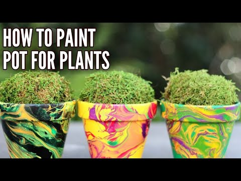 How to paint pots for plants