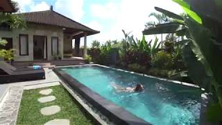 Обзор дома на Бали (villa D Carik Mas)
