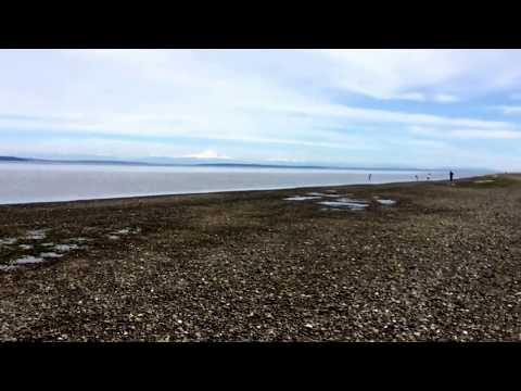 Hiking on Delta Boundary Bay Regional Park (Vancouver Canada) on 2017 Victoria long weekend