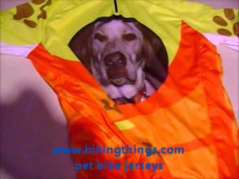 custom dog bike jersey, amazing labrador bike jerseys, custom pet jerseys bikingthings.wmv