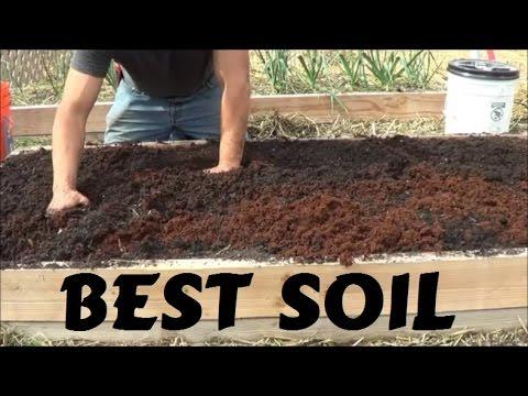 Best Soil For Rasied Garden Bed
