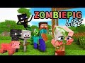 Download  Monster School : Enderman's Life Part 5 with ZOMBIE PIGMAN's Life - BEST Minecraft Animation MP3,3GP,MP4