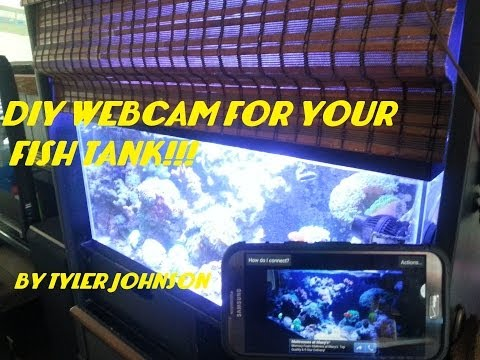 FREE DIY WEBCAM FOR YOUR FISH TANK!!!