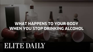 What Happens To Your Body When You Stop Drinking Alcohol Labs Elite D