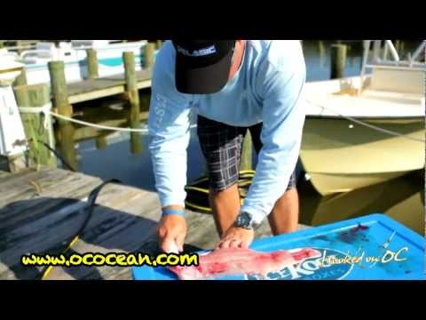 How To Filet a Rockfish by Scott Lenox and Hooked On OC