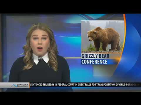 Top stories from today's Montana This Morning, 12-1-17