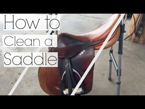 How to | Clean a saddle easily