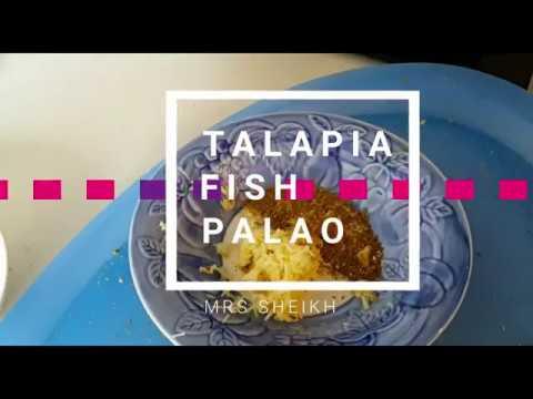 Talapia Fish Palao