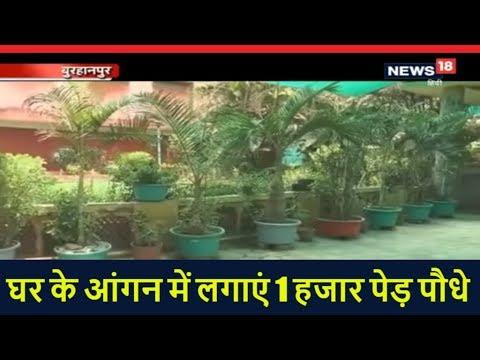 एक परिवार जिसने घर के आंगन में लगाएं 1 हजार पेड़ पौधे