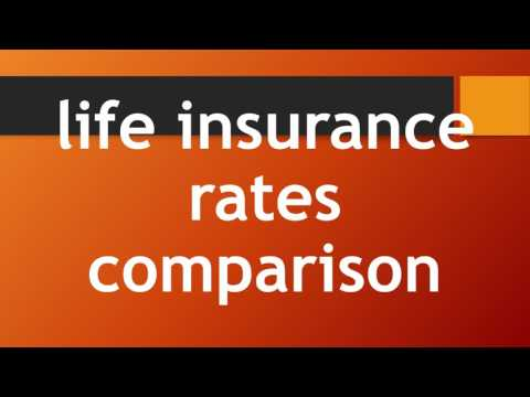 affordable life insurance policy