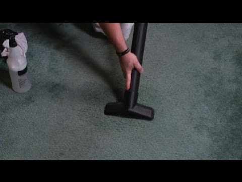 How to Quickly Clean a Beer Spill on the Carpet : Carpet Care & Cleaning