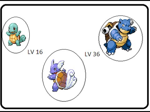 Pokemon Fire Red Squirtle Evolves To Wartortle and To Blastoise