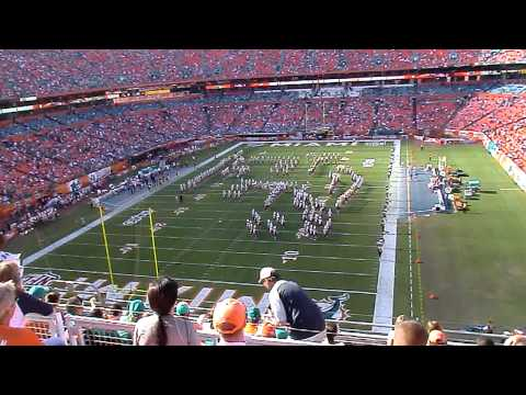 Bethune Cookman Marching Wild Cats band in shape of a Miami Dolphin