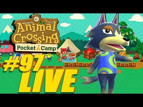 What's New? - Animal Crossing: Pocket Camp Live Stream